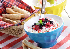 Cottage cheese in blue bowl Royalty Free Stock Images