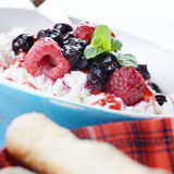Cottage cheese in blue bowl Stock Image