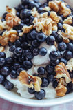 Cottage cheese with blueberries, nuts and honey. Cottage cheese with blueberries, walnuts and honey Royalty Free Stock Photography