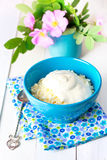 Cottage cheese  in bowl. Royalty Free Stock Photography
