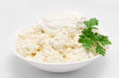 Cottage cheese in the bowl  Stock Image