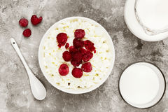 Cottage cheese in bowl with frozen raspberry and milk in glass o. N a light background. Top view. Food background. Toning Royalty Free Stock Image