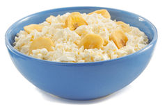 Cottage cheese in bowl Stock Image