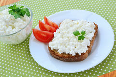 Cottage cheese on bread Stock Images