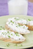 Cottage cheese canapes Stock Image
