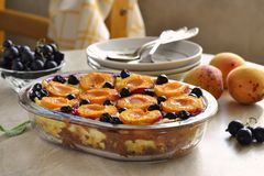 Cottage cheese casserole with apricots and black currant. Selective focus Stock Image