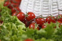 Cottage cheese with cherry tomatoes Stock Image
