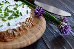 Cottage cheese and chives Royalty Free Stock Photos