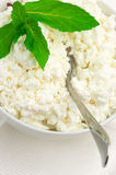 Cottage cheese close-up Royalty Free Stock Photos