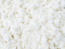 Cottage cheese close-up Royalty Free Stock Photo