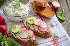 Cottage cheese cream with dill and garlic with toasts, radish and cucumber. Rustic background. Horizontal permission. Selective focus Stock Image