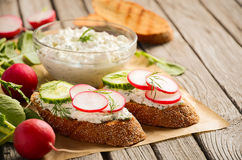 Cottage cheese cream with dill and garlic with toasts, radish and cucumber. Rustic background. Horizontal permission. Selective focus. Copy space Stock Image