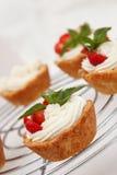 Cottage cheese cream tarts Stock Image