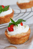 Cottage cheese cream tarts Stock Image