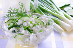 Cottage cheese with cucumber Royalty Free Stock Photography