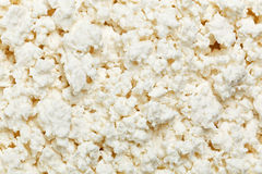 Cottage cheese (curd), background Stock Photos