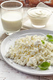 Cottage cheese and dairy products on white wooden table Stock Images