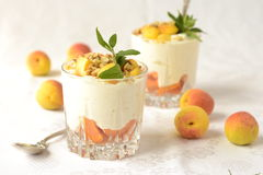 Cottage cheese dessert with apricots, walnuts and mint Royalty Free Stock Photography