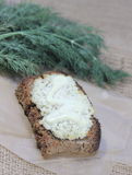 Cottage cheese with dill Stock Image