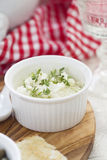 Cottage cheese dip Stock Images