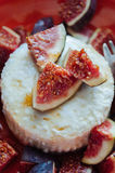 Cottage cheese with figs and honey. Figs with cheese and honey on a ceramic plate Stock Photos