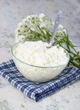 Cottage cheese and flowers on a napkin Royalty Free Stock Photo