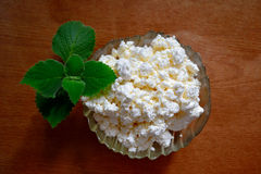 Cottage cheese with fresh mint stock photo