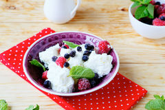 Cottage cheese with fresh raspberries and blueberries. Food closeup Royalty Free Stock Photo