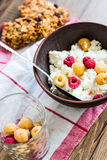 Cottage cheese with fresh raspberries in a clay plate, granola b. Ars, healthy food Royalty Free Stock Images