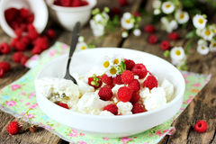 Cottage cheese with fresh raspberries. Concept of healthy diet f Royalty Free Stock Images