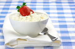 Cottage cheese with garnish Royalty Free Stock Photography