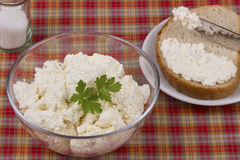 Cottage cheese in glass Stock Photo
