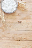 Cottage cheese and grains background. Cottage cheese with wheat grains. Copy space background Stock Image