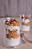 Cottage cheese and granola Stock Photography