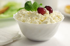 Cottage cheese of grapes and spinach Royalty Free Stock Image