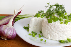 Cottage cheese with greens Royalty Free Stock Photos