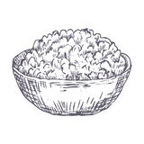 Cottage cheese hand drawn vector illustration Royalty Free Stock Images