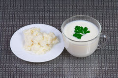 The cottage cheese, kefir and greens Royalty Free Stock Photography