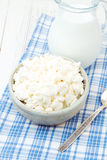 Cottage cheese and milk Royalty Free Stock Photography