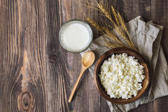 Cottage cheese, milk and ears of wheat Stock Photo