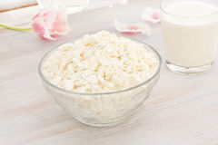 Cottage cheese with milk and pink tulip Royalty Free Stock Photos