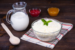 Cottage cheese and milk Stock Photography