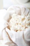 Cottage cheese, milk, yogurt on a white background Royalty Free Stock Image