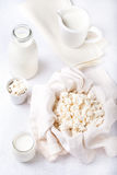 Cottage cheese, milk, yogurt on a white background Royalty Free Stock Images