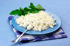 Cottage cheese with mint royalty free stock images