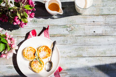 Cottage cheese pancakes with mint and powdered sugar, flowers,to Royalty Free Stock Images