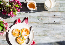 Cottage cheese pancakes with mint and powdered sugar, flowers,to Royalty Free Stock Image