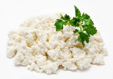 Cottage cheese with parsley  Royalty Free Stock Images
