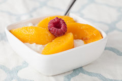 Cottage Cheese with Peaches side view Stock Photography