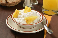Cottage cheese and pineapple Stock Photos